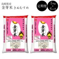 46-SS-4 BG無洗米・金芽米【定期】きぬむすめ 5kg/6ヵ月