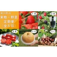 C-11.佐川のくだもの・野菜 定期便(全5回)