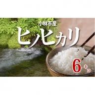 小林産ヒノヒカリ(無洗米)<6kg:西諸米穀商協同組合> 31-SNB06