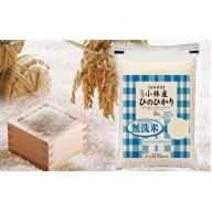 【定期便】【新米!】小林産ひのひかり(無洗米120㎏) 30-0036