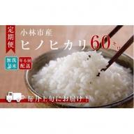 【定期便】小林産ひのひかり無洗米(10kg×6回) 31-NB11