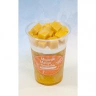 【APP】みやざき果実のフローズンアイス  31-AP04