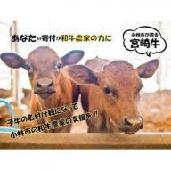 【和牛農家支援プログラム】子牛の命名権!ブロンズ   30-1070