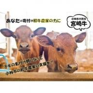 【和牛農家支援プログラム】子牛の命名権!プラチナ   30-1071