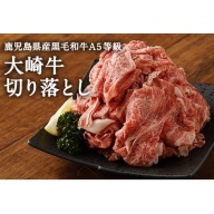 【A-454】鹿児島県産黒毛和牛 A5等級大崎牛 切り落とし 500g
