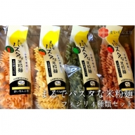 05-MK-1 まるでパスタな米粉麺 フィジリ4種類セット