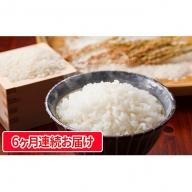 【6カ月連続お届け】信州のお米(長野県ブランド米)風さやか5kg