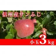 【信州産葉とらずりんご】サンふじ約3kg(10~16玉)小玉