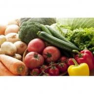 【6ヶ月お届け】季節の野菜ふるさと便