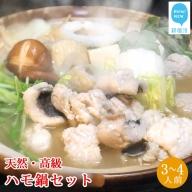 せとぴち!オリジナル 天然ハモ鍋セット(3~4人前)