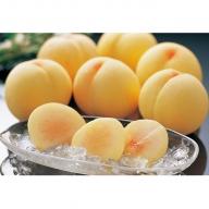 岡山白桃 1.5kg(5~6玉)