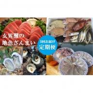 【5回お届け】マグロ、カキ、真鯛にサザエ、玄海灘の地魚ざんまい定期便