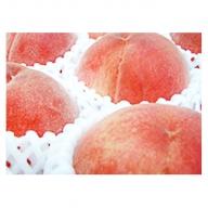 【先行予約】フルーツ王国山梨の桃(3kg)