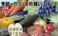 100006. 【環境王国こまつの恵み】季節の野菜・果物詰合せ(年6回)