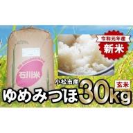 028001. 【令和元年産・新米】早生品種の代表格ゆめみづほ 玄米30kg