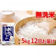 【令和元年産新米】無洗米北海道赤平産ゆめぴりか特別栽培米5kg×12回お届け