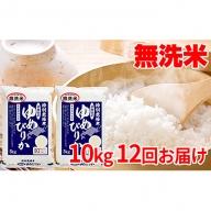 無洗米北海道赤平産ゆめぴりか特別栽培米10kg×12回お届け