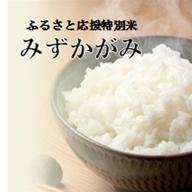 平成30年産 ふるさと応援特別米 みずかがみ(BG無洗米)10kg