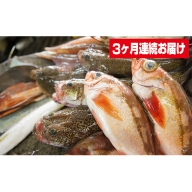 本州配送限定 産地直送 氷見産鮮魚詰め合せ定期便3ヶ月連続