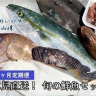天然のいけす 富山湾 氷見漁港 旬の鮮魚セット定期便6ヶ月連続※配送地域限定
