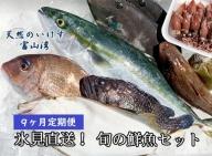 天然のいけす 富山湾 氷見漁港 旬の鮮魚セット定期便9ヶ月連続※配送地域限定