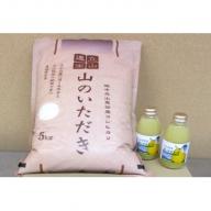 東谷セット(立山のお米とラ・フランスジュース)