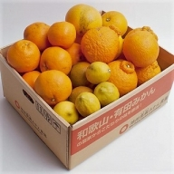 「特別栽培」柑橘詰合せ