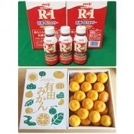 【健康セット】明治 R-1 低糖・低カロリー 112ml 24本と有田みかん 化粧箱 約4.5kg S~Lサイズ(サイズおまかせ)