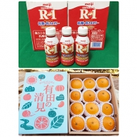 【健康セット】明治 R-1 低糖・低カロリー 112ml 24本と有田の清見 化粧箱 12個入り M~2Lサイズ(サイズおまかせ)