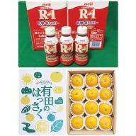 【健康セット】明治 R-1 低糖・低カロリー 112ml 24本と有田の八朔(はっさく) 化粧箱 12個入り M~2Lサイズ(サイズおまかせ)
