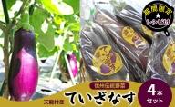 【期間限定☆レシピ付】信州伝統野菜 天龍村産ていざなす4本セット