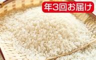 岐阜県産ハツシモ 10kg×3袋 年3回(11月、2月、6月)
