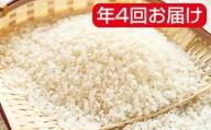 岐阜県産ハツシモ 10kg×3袋 年4回(11月、1月、4月、7月)