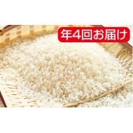 岐阜県産ハツシモ 10kg×3袋 年4回(10月、1月、4月、7月)