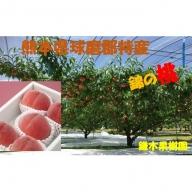 錦の桃(約4kg 12玉~18玉)