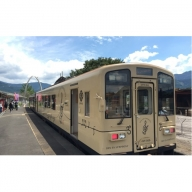 観光列車田園シンフォニーはぴねすトレイン 幸せ探しの列車たび!(4名様プラン)
