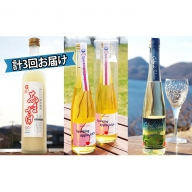 北海道壮瞥産 特産品で作ったオススメ飲料 計3回お届け