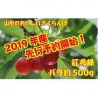 AA1302 さくらんぼ紅秀峰(山形県産) 約500gバラ詰め