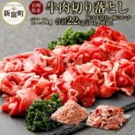 今だけ豚肉1kgつき<宮崎県産牛肉 切り落とし 計1200g(300g×4パック)>【B311】