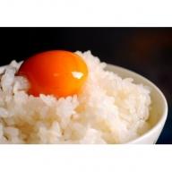 ネッカリッチ赤たまご「児湯一番」(3箱60個)【B23】