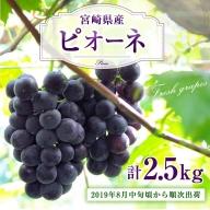 予約受付<宮崎県産 ピオーネ 計2.5kg>※2019年8月中旬頃から順次出荷【C180】