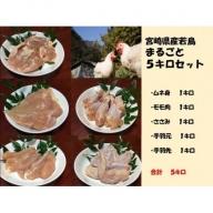 宮崎県産若鳥まるごと5キロセット【C135】