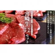 【究極の牛肉】特選 宮崎牛 シルバーセット<ウデ・モモ 計4,800g>【E31】