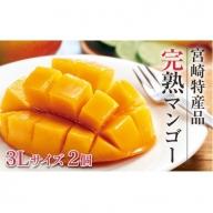 予約商品<宮崎 特産品 完熟マンゴー 大玉 3Lサイズ 2個>※2019年5月上旬から7月下旬にかけて順次発送【B348】