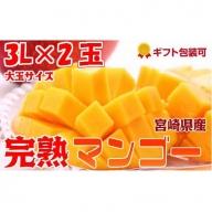2019年5月中旬から順次出荷<大玉 3L サイズ>宮崎県産 完熟マンゴー 2玉 化粧箱入り【C79】