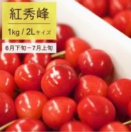 012-A02 【さくらんぼ】2019年産(紅秀峰)500g×2パック