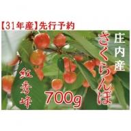 237 山形県庄内のさくらんぼ「紅秀峰」約700g