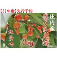 238 山形県庄内のさくらんぼ「紅秀峰」約1kg
