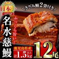 E0-002 生産量日本一!鹿児島県産うなぎ蒲焼 名水慈鰻 12尾