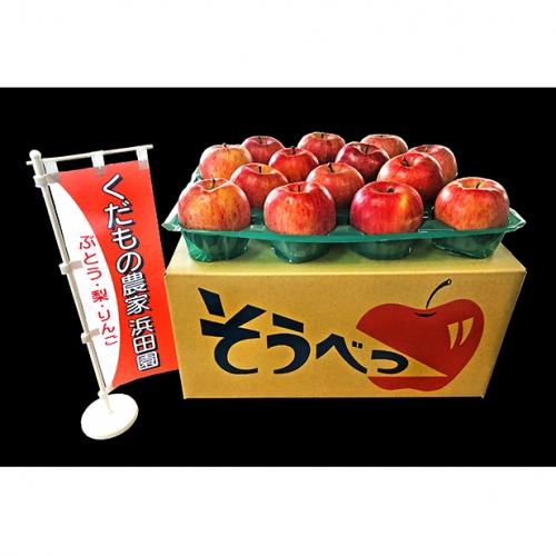 約10kg!北海道壮瞥産 家庭用りんご「ふじ」